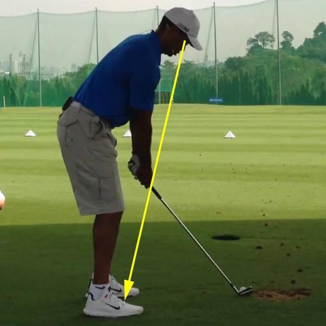 Golf Swing 106  Setup: Distance from the Golf Ball – Hand