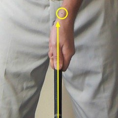 Figure 3. A weaker grip