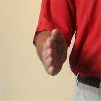 Figure 1. Neutral Wrist Position