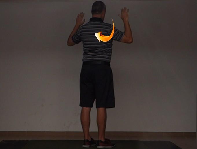 Scapular Downward Rotation - Golf Anatomy and Kinesiology
