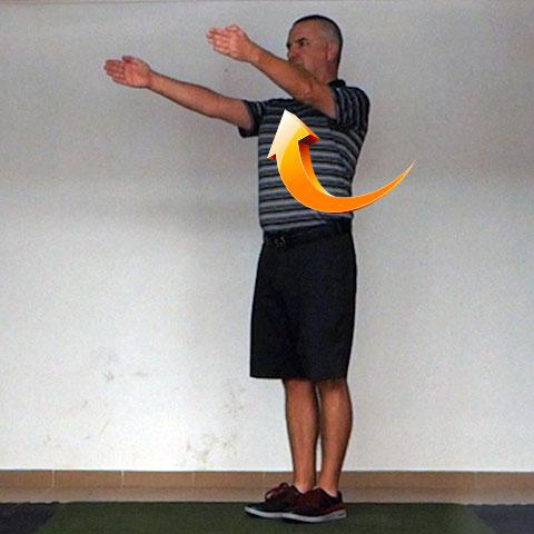 Shoulder Flexion - Golf Anatomy and Kinesiology