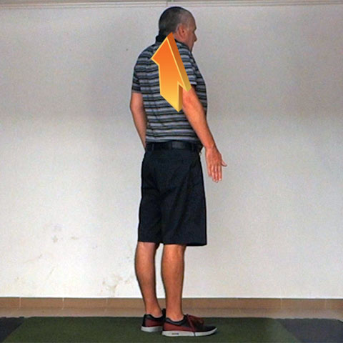 Scapular Elevation - Golf Anatomy and Kinesiology