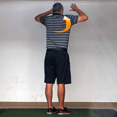 Scapular Upward Rotation - Golf Anatomy and Kinesiology