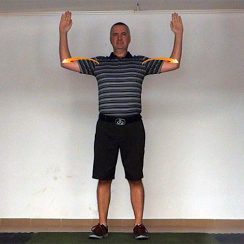 Shoulder Transverse Abduction - Golf Anatomy and Kinesiology