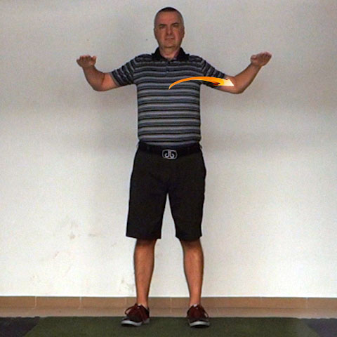 Shoulder Transverse Extension - Golf Anatomy and Kinesiology